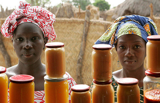Small Scale Business Ventures for Widows and Children